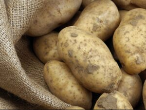 How many large-size potatoes in a pound