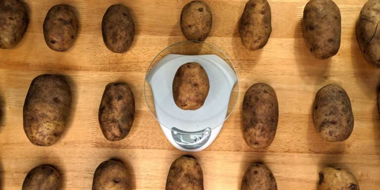 How many potatoes in a pound